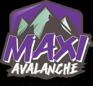logo-maxi-2015